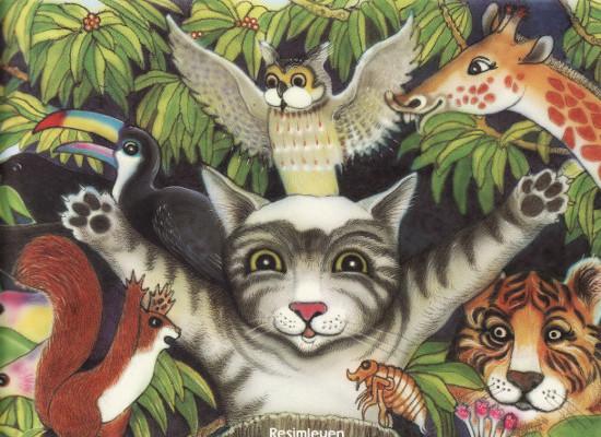 Kel Kedi