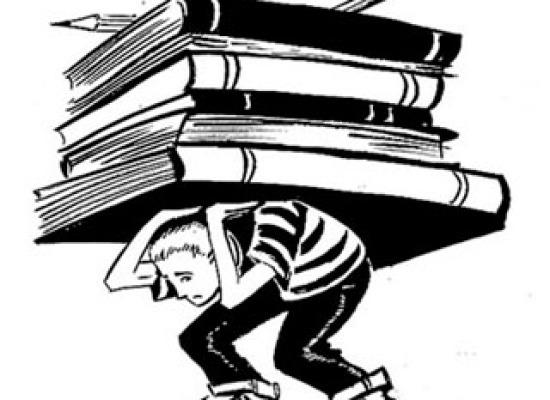 Biri bana kitap özeti ödevlerini açıklasın.