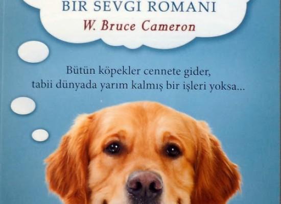Can Dostum: Bir Sevgi Romanı