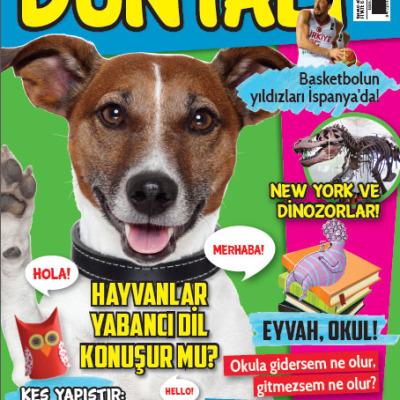 7 yanıtta çocuk dergilerinin önemi