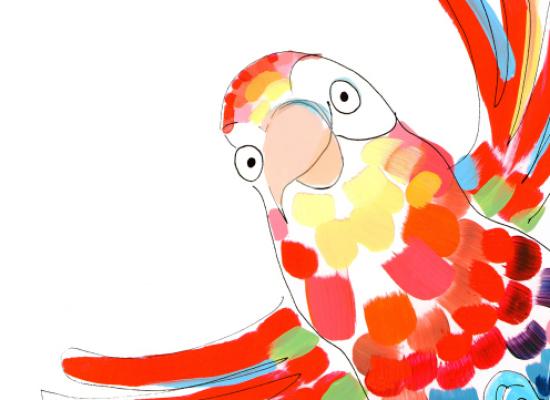Sesini arayan papağan Oskar