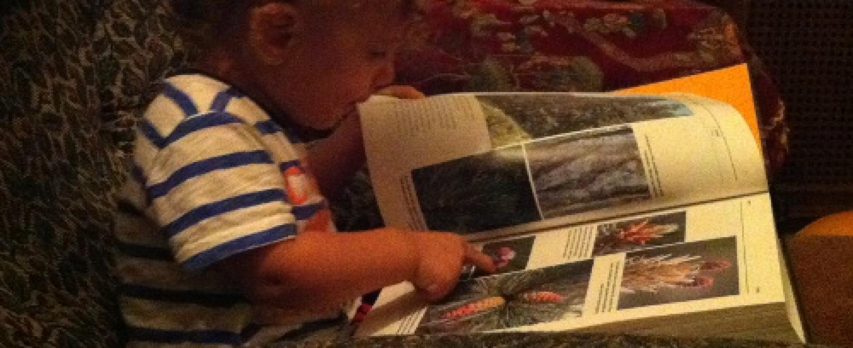 Kitapların sadece yazılarını değil, resimlerini de okuyoruz.